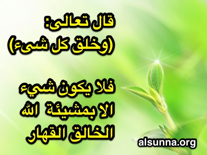 islamic_quotes_and_sayings__131_.jpg