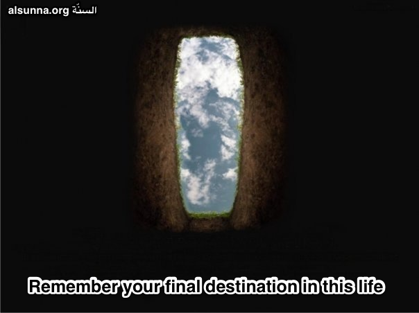 islamic_quotes_and_sayings__20_.png