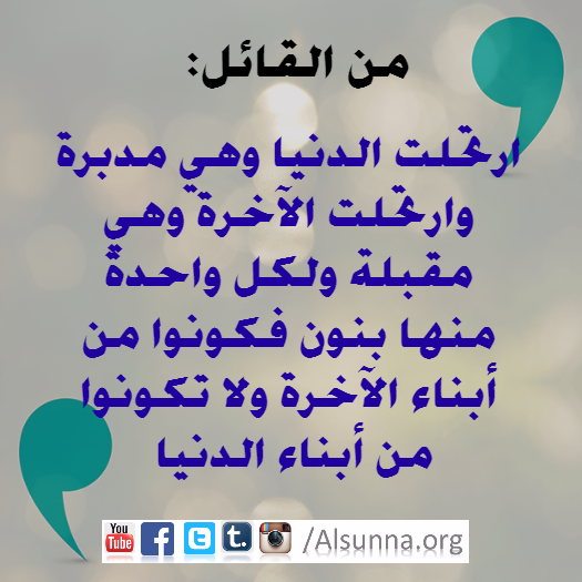 quote_imam_aliy_dunia_2.png