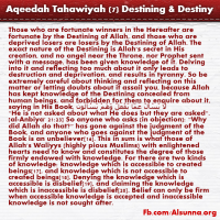 Aqeedah Tahawiyah English (7)