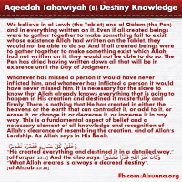 Aqeedah Tahawiyah English (8)